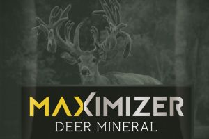 Custom deer Miner Logo and Big Buck