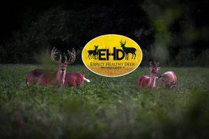 EHD Preventative Deer Technology